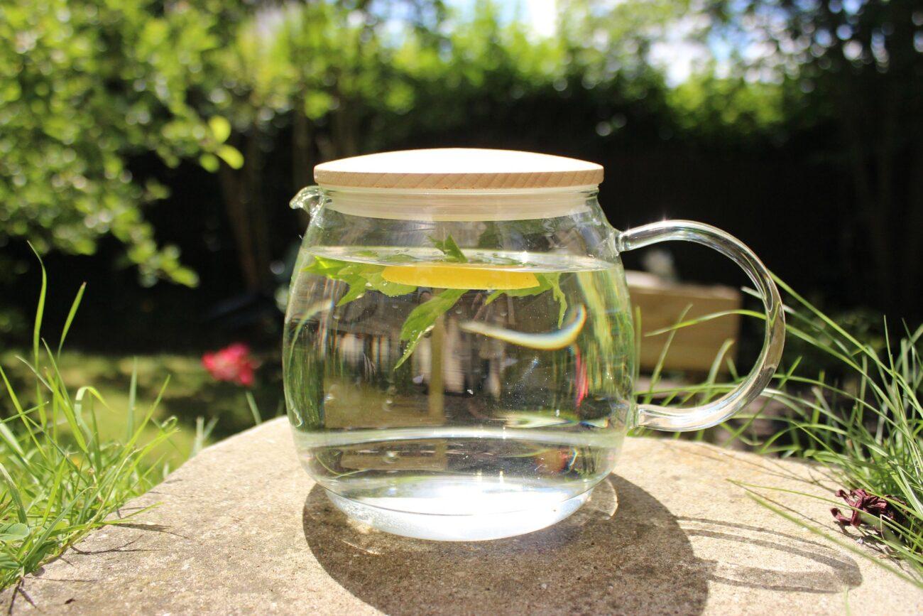 La boisson ayurvédique fraicheur de l'été : mentholée, sattvique et tridoshique (pour vata, pitta et kapha)